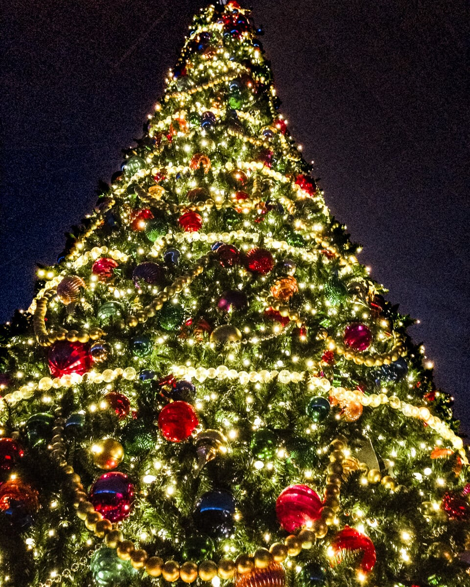 A Christmas tree at SeaWorld Orlando. Get a list of 40+ things to do at Christmas in Orlando here.