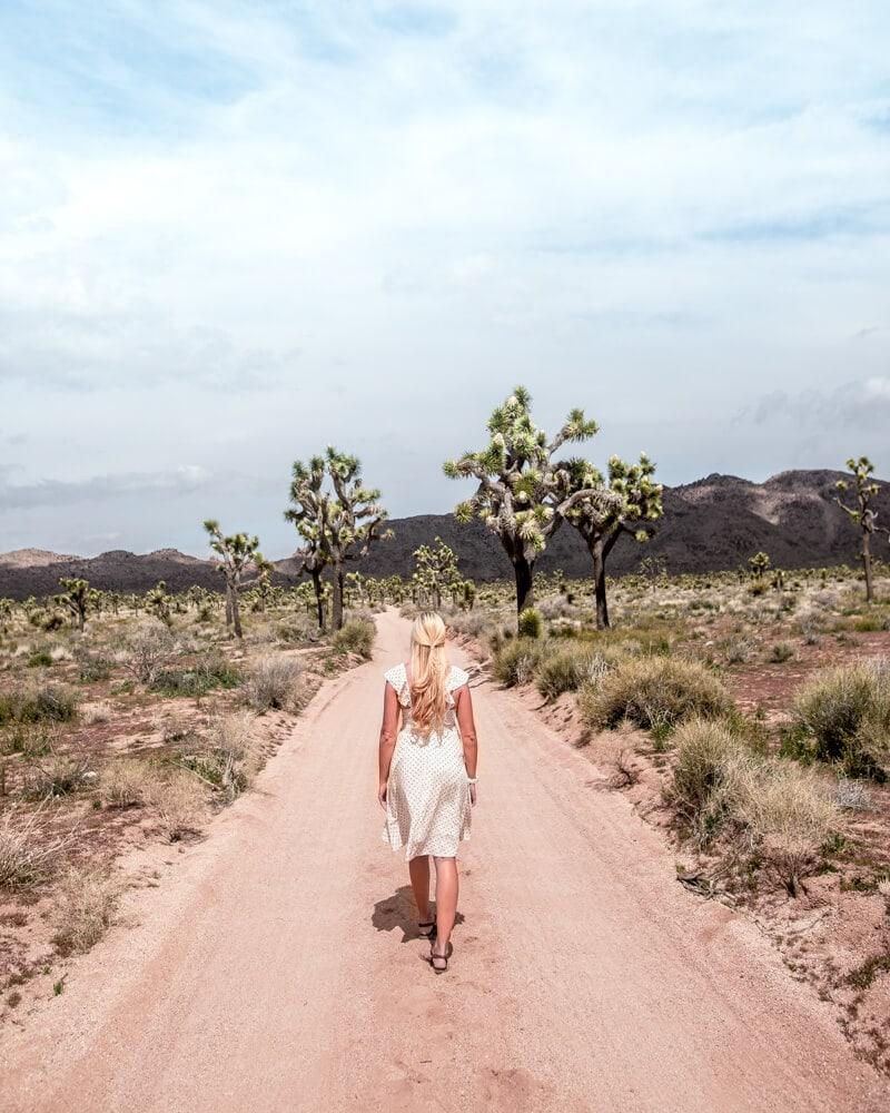 Walking down a dirt road in Joshua Tree National Park