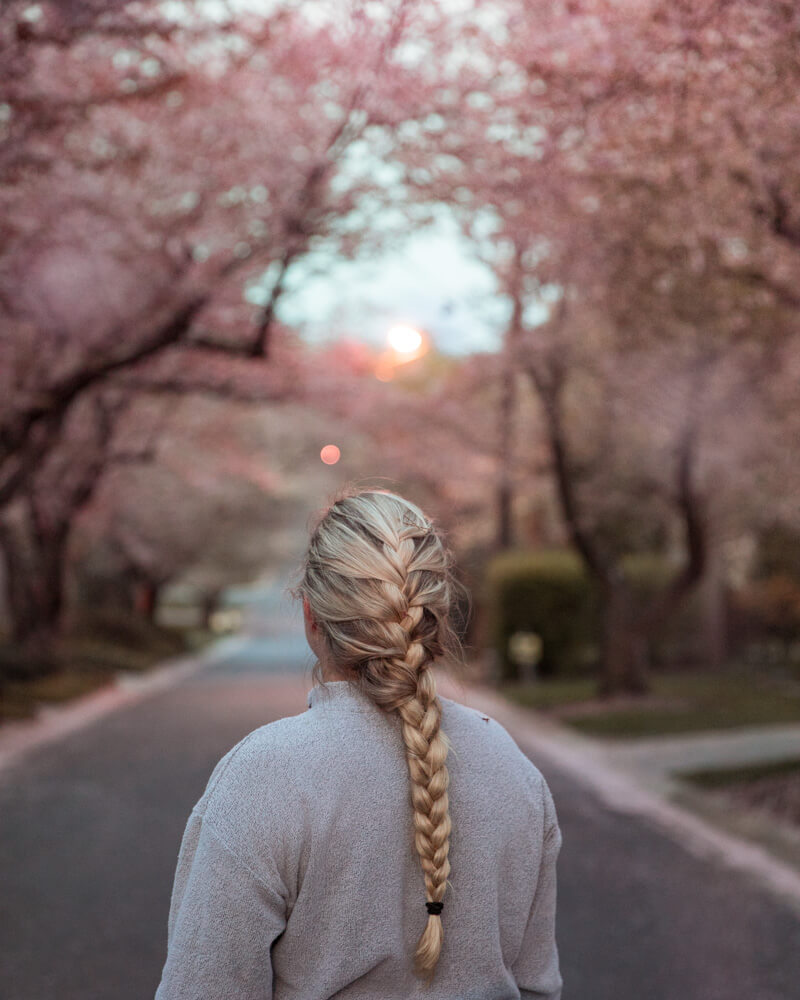 woman in Kenwood cherry blossoms in Maryland
