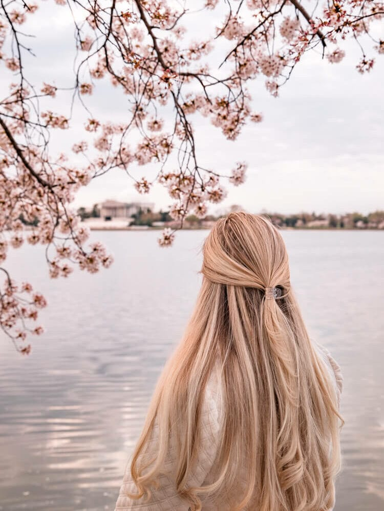woman looking at the Jefferson Memorial through the cherry blossoms